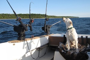 Fishing poles on a Great Lakes fishing boat