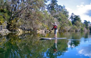 e50e0fa881 What's SUP? Michigan state parks lure diverse users with Rec 101 ...