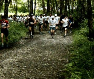 Trail runners pounding the dirt Photo: kingcountryparks (flickr)