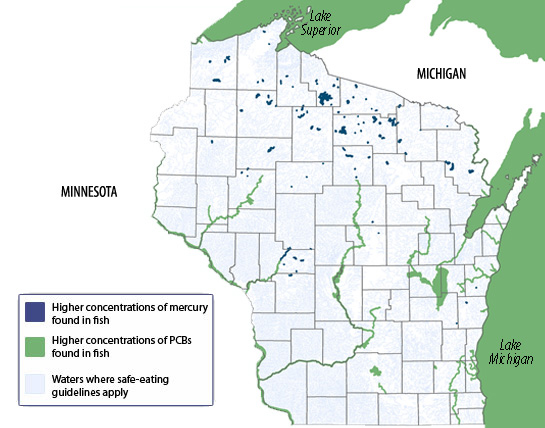 Each of the chemical families that trigger fish consumption advisories in Wisconsin have been linked to endocrine disruption, among other health effects. This map shows waters affected by fish consumption advisories. Photo: Wisconsin Department of Natural Resources