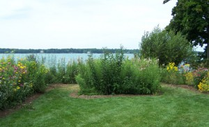 Native plants add structure, color and interest to an otherwise boring lawn. Gardens ease the transition between the house and beach, slow runoff and filter pollutants. Photo: Jim Brueck, Native Lakescapes, LLC.