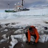Dr. Jason Box gathers samples of cryocronite (impurities on the ice's surface) for analysis from the Petermann glacier in Greeland. Photo: Jason Box.
