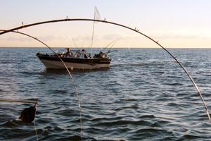 Fishery workshop surveys show more positive attitudes for Lake huron fishing report