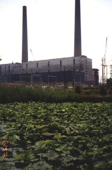 The DTE Energy Monroe Power Plant alongside the River Raisin Area of Concern. Photo: Environmental Protection Agency.