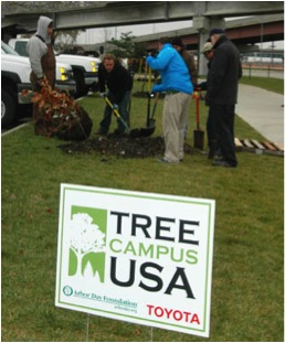 The University of Nebraska is capitalizing on their state's rich history of planting trees. Photo: University of Nebraska