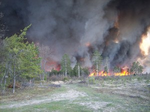 Rep. Bob Genetski says he introduced the wildfire bill to help small, under-equipped localities. Photo: USFWS Headquarters/Flickr.