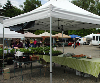 Many Michigan farmers markets, like the Allen Street Farmers Market in Lansing (pictured) are promoting their acceptance of food assistance benefits. Photo: Becky McKendry.
