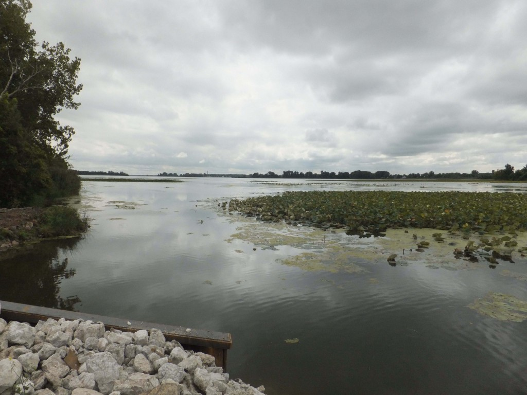 Erie Marsh has been cut off from Lake Erie since the 1940s. The Nature Conservancy is changing that. (Photo: The Nature Conservancy)