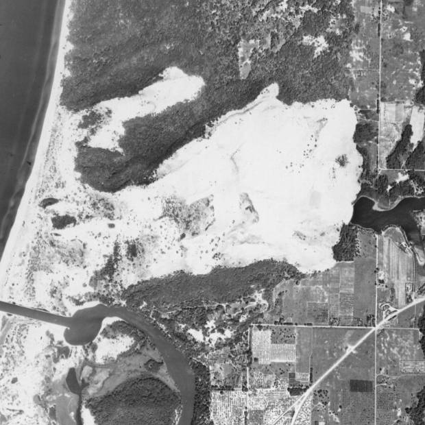 This 1950 photograph shows the dunes in Saugatuck, Mich. four years before the area was purchased to use for dune rides. Image: MSU Aerial Imagery Archive