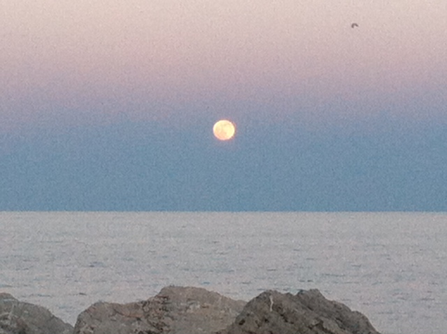 A moonrise over Lake Michigan from the shores of Kenosha, Wisc. (Photo: Jodie Opie)