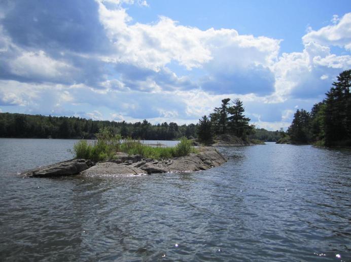Deer Lake. Image: Stephanie Swart