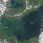 LakeErieBloom_Aug32014
