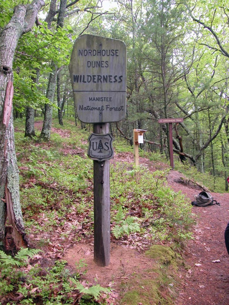 Nordhouse Dunes Wilderness in Huron-Manistee National Forest. Credit: U.S. Forest Service
