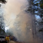 Smoke rises from a prescribed fire at the New Jersey Pine Barrens in March, 2010. Image: Michael Kiefer