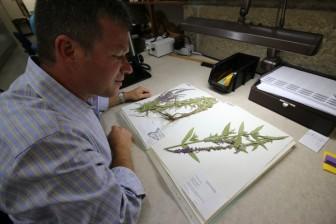 Ken Cameron, UW-Madison Herbarium