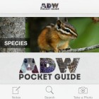 ADW Pocket Guide