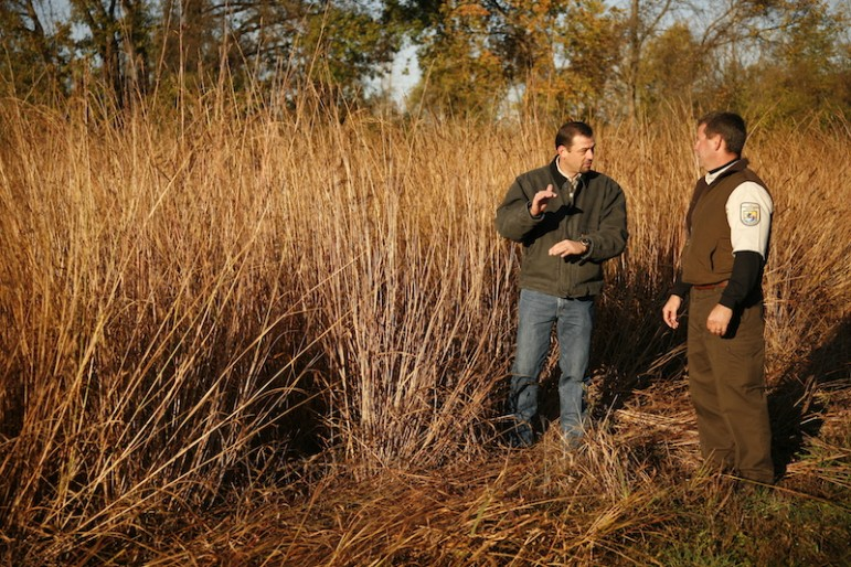 Tom Schwartz of FDC Enterprises discusses the use of a dedicated energy crop with a U.S. Fish and Wildlife Service official. Image: FDC Enterprises