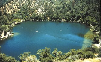 The same lake with a normal amount of Daphnia. Image: Orlando Sarnelle