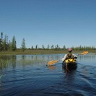 Adirondack Explorer Editor Phil Brown canoeing the Mud Pond waterway in May 2009. Image: Susan Bibeau. (One time use; republication rights not available from Great Lakes Echo.)