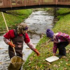Michigan volunteers collect macroinvertebrates last October. Image: John Lloyd