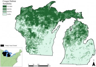 Study found best potential places for cougars to live. Image: Habitat Capacity for Cougar Recolonization in the Upper Great Lakes Region, Michigan Technological University