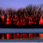 The Minnesota Valley National Wildlife Refuge was established in 1976 to provide habitat for a large number of migratory waterfowl, fish, and other wildlife species threatened by commercial and industrial development and to provide environmental education. Image: U.S. Fish and Wildlife Service