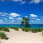 A view of Lake Michigan from Mt. Baldy. Image: Flickr, Tom Gill