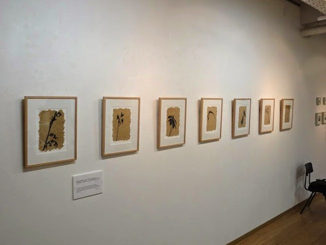 Gallery Karahashi