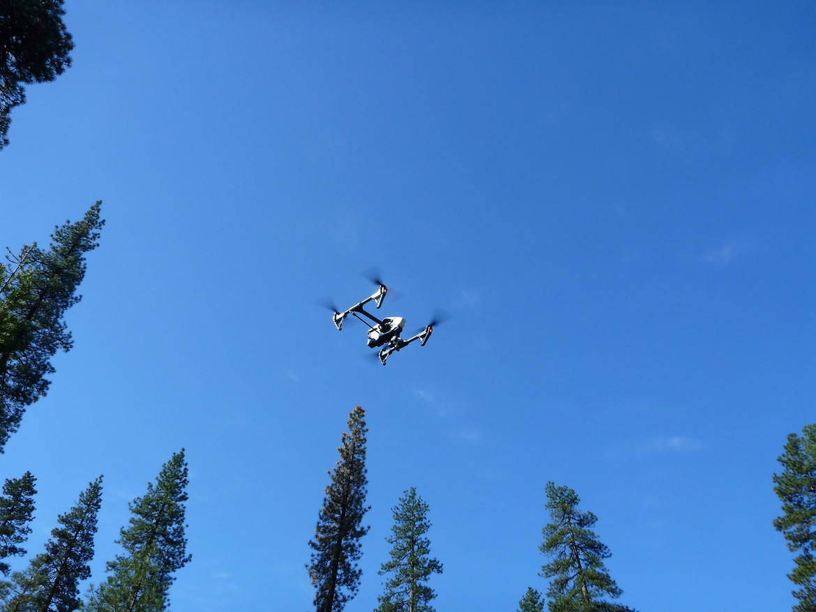 Unmanned aircraft systems, like this quadcopter, provide numerous benefits over manned aircraft for wildlife research. Image: Martin Criminale, Flickr