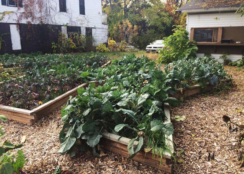 Perma beds at Grand Raids urban garden. Image: Marie Orttenburger