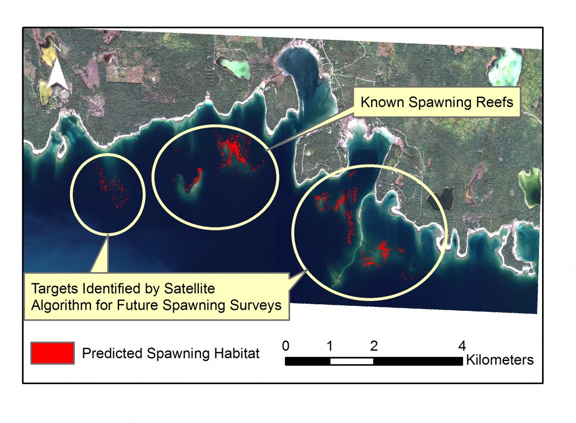 Areas within the Drummond Island Refuge identified by satellites as likely spawning habitat are shown in red.