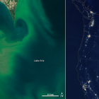Lake Erie algal bloom in July 2015 (left) and wildfires at night (right). The photos are competing against each other in the first round of NASA's Tournament Earth this year. Image: NASA