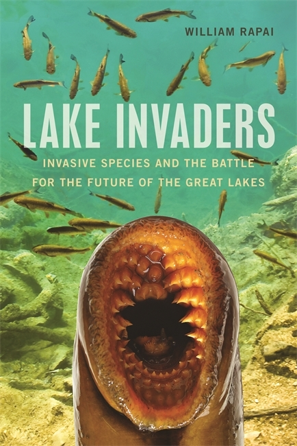 Book Cover, Lake Invaders