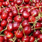 Producers can find the best markets to export their Michigan-born products, like cherries.