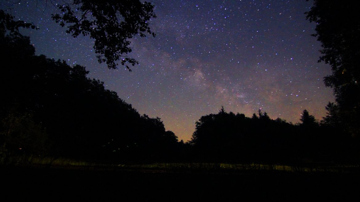 The Milky Way is just one of the features natural darkness reveals. Image: Tony Andrea, Flickr.
