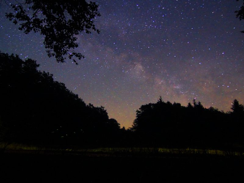The Milky Way is just one of the features natural darkness reveals. Image: Tony Andrea.