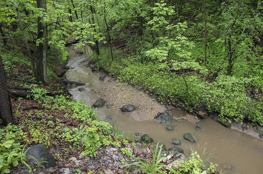 ravine illinois