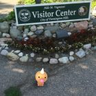 A wild weedle at Heritage Park in Farmington Hills, Michigan. Image: Eamon Devlin