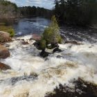 Menominee River. Image: Environmental Health News.