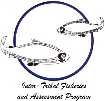 inter-tribal-fisheries-assessment-program-logo