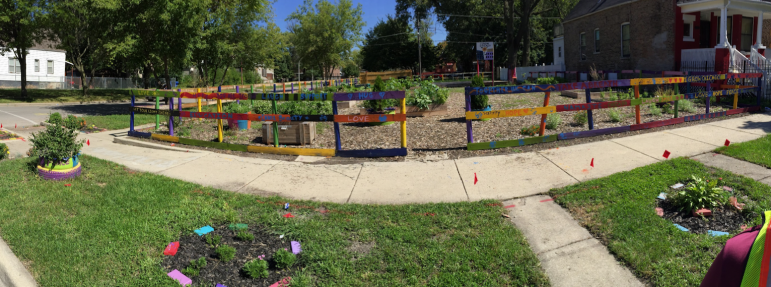 A formerly vacant Chicago lot is now an urban garden.
