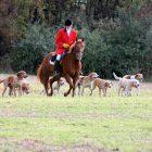 Bob Carr, huntsman of Battle Creek Hunt, rides in a field in Augusta, Michigan with the hunt's hounds. Photo: Karen Hopper Usher