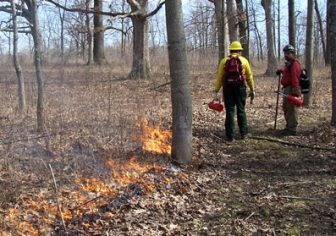 Indiana forestry officials conduct a prescribed burn as part of forest management: Image: Indiana DNR