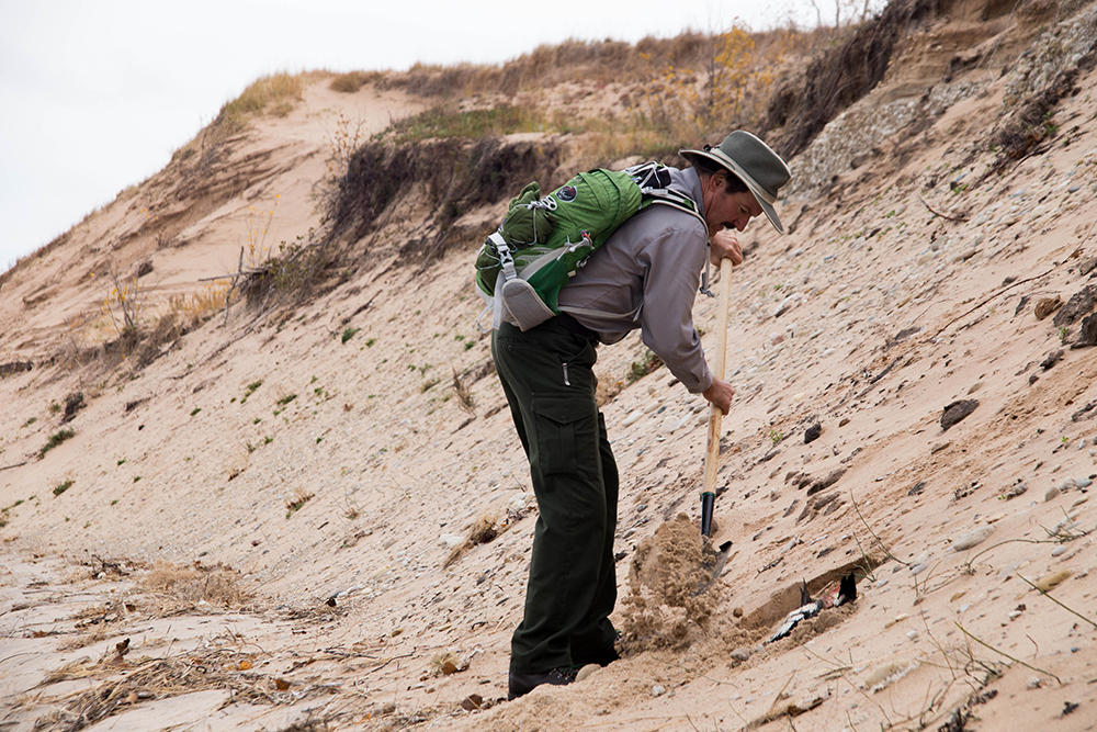 Ray digs a hole to bury a dead bird. Image: Samuel Corden