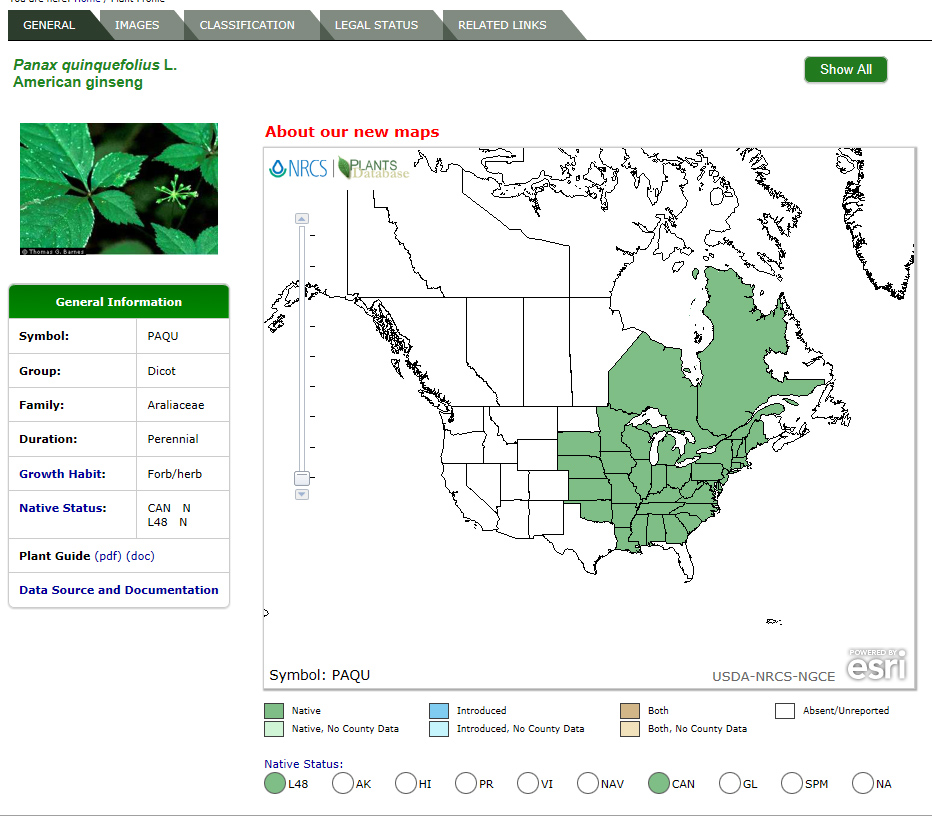 Ginseng In Illinois Map.In Pursuit Of Plants Shoe Leather And High Tech Catch Criminals