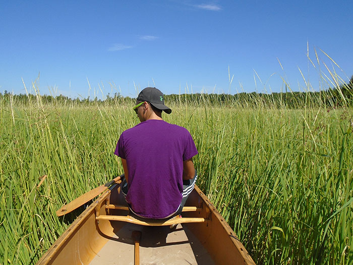 Josh Beaver, cousin of Elder Jeff Beaver, checks on the rice beds in Mitchell Lake, located in the Kawartha Lakes region. Image: Jeff Beaver